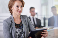 Команда успешных бизнесменов имея встречу в исполнительном sunlit офисе Стоковая Фотография