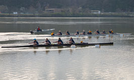 команда rowing Стоковое фото RF