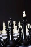 2 команды одной шахмат перед другой Стоковое Изображение