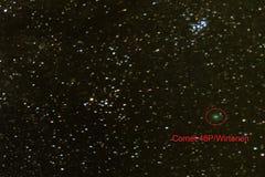 Комета 46P/Wirtanen в ночном небе стоковые фото