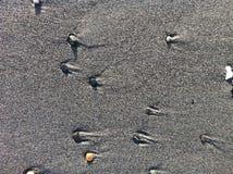 Кометы 3 пляжа Стоковое Изображение RF