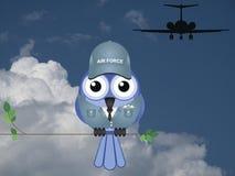Комичный летчик Стоковое фото RF