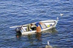 Коммерчески атлантические канадские жатки рыб собирая атлантического омара Стоковое Изображение RF