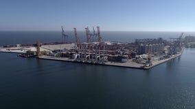 Коммерчески порт с контейнером и кранами с поднимающейся укосиной на портовом районе моря против голубого неба и сияющей воды акции видеоматериалы
