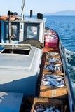 коммерчески рыбозавод стоковая фотография rf