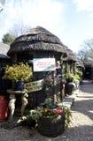 Комната, антиквариаты и садовничать чая Стоковая Фотография RF