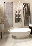 комната ванны шикарная Стоковая Фотография RF