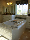 комната ванны шикарная Стоковое Фото