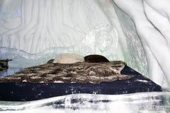 комната Квебека льда гостиницы Стоковые Изображения RF