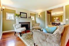 комната классицистического зеленого цвета живя естественная Стоковые Фотографии RF