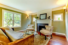 комната классицистического зеленого цвета живя естественная Стоковое Фото
