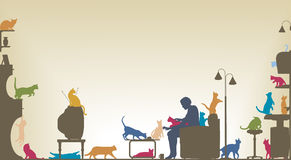 комната кота Стоковая Фотография RF