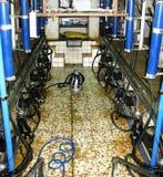 комната молока притяжки к Стоковая Фотография RF