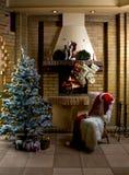 комната рождества Стоковое Фото