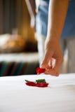 комната роскоши гостиницы Стоковое Фото