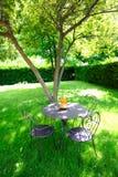 комната сада зеленая естественная Стоковые Изображения
