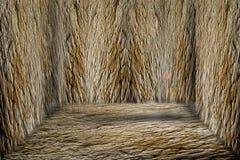 Комната с каменными стенами как пещера Стоковые Изображения RF