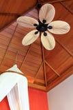 Комната с лопаткой вентилятора потолка ладони Leaf-Shaped стоковые фото