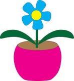 Комнатное растение в розовом баке стоковое фото