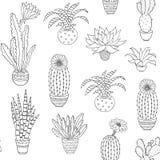 Комнатное растение нарисованное рукой Стоковое фото RF