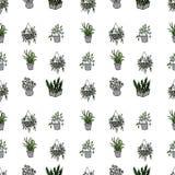 Комнатные растения в картине цветочных горшков безшовной иллюстрация вектора