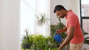 Комнатные растения индийского человека моча дома акции видеоматериалы