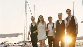 Компания друзей которые выглядеть как музыканты гуляет вдоль пристани в вечере видеоматериал