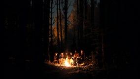 Компания молодых людей в лесе зимы сидя огнем сток-видео