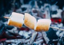 Компания друзей лагерным костером делая зажаренные зефиры Стоковая Фотография RF