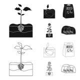 Компания, экологичность, и другой значок сети в черноте, стиле плана Шелухи, штрафы, значки сада в собрании комплекта иллюстрация вектора