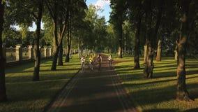Компания sporty людей задействуя в парке видеоматериал
