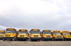 Компановка школьного автобуса Стоковые Изображения RF