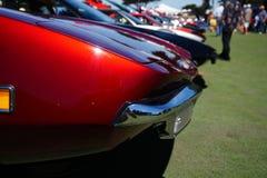 Компановка De Tomaso Panteras Стоковые Изображения RF