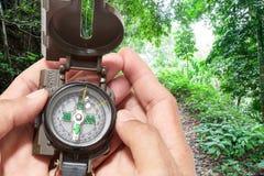Компас в руке, в предпосылке леса мангровы Стоковое Фото