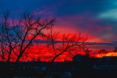 Комплекты Солнця за деревьями Стоковые Изображения RF