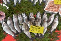 Комплекты форели, креветки и рыб для супа в рыбном базаре Istan стоковые изображения rf