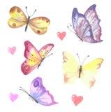 Комплект бабочек watercolour вектора Симпатичное собрание иллюстрация вектора