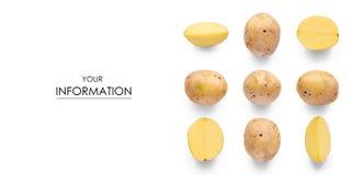 Комплект безшовный с картиной картошек Стоковое Фото