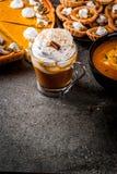 Комплект блюд тыквы Стоковые Фотографии RF