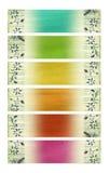 комплект бумаги цветка кокоса знамени яркий Стоковая Фотография RF