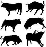 комплект быка Стоковые Изображения RF