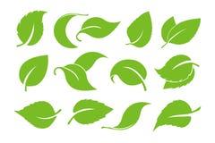 Комплект вектора значка листьев изолированный на белой предпосылке Различные формы зеленых листьев деревьев и заводов элементы дл иллюстрация штока
