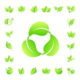 Комплект вектора значка листьев Стоковая Фотография