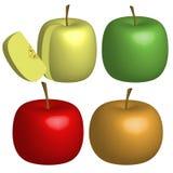 Комплект вектора зрелых яблок Стоковая Фотография RF