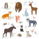 Комплект вектора милых животных: хитрите, принесите, кролик, белка, волк, еж, сыч, олень, кот, собака, мышь иллюстрация вектора