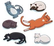 Комплект вектора милых котов спать Стоковые Фото