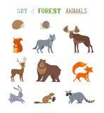 Комплект вектора одичалых животных леса сделанных в стиле шаржа Стоковые Изображения RF