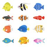Комплект вектора стиля красочных рыб плоский Стоковые Изображения RF