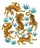Комплект вектора тигров и тропических листьев Ультрамодная иллюстрация Стоковое Изображение RF