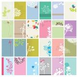 комплект визитных карточек флористический Стоковые Фотографии RF